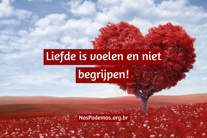 Liefde is voelen en niet begrijpen!