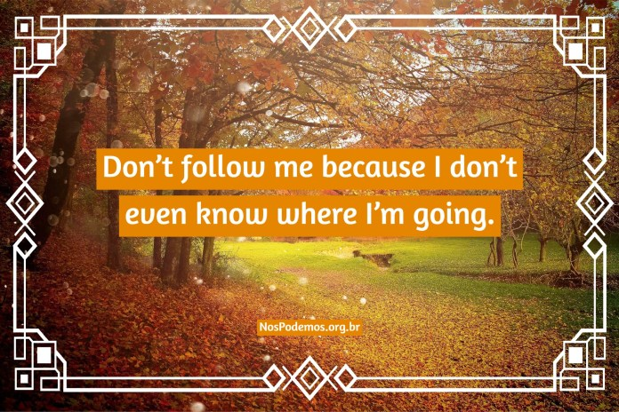 Don't follow me because I don't even know where I'm going.