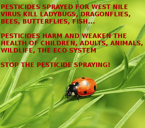 No Spray Coalition Condemns De Blasio Admin for Toxic Pesticide Spraying; 18th Year of Harmful Spraying for West Nile Virus