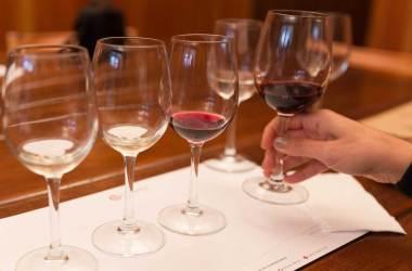 vinícolas chile vale de Casablanca Vinho Vinícola Chile