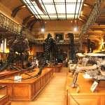 Museu de História Natural de Paris e Jardin des Plantes