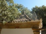 portuguese roofs6