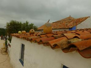 portuguese roofs9