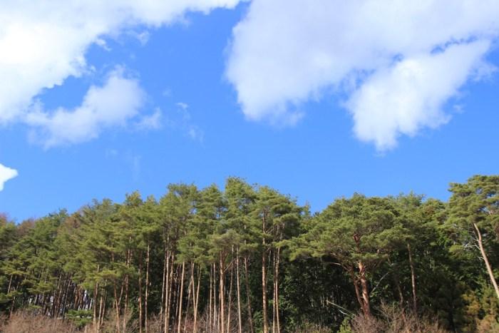 長野県の秘境、下栗の里で撮った空。空気が美味しかったです。