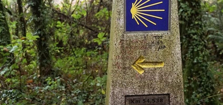 Guía del Camino de Santiago para principiantes