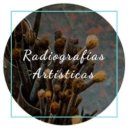 Radiografías de obras de arte
