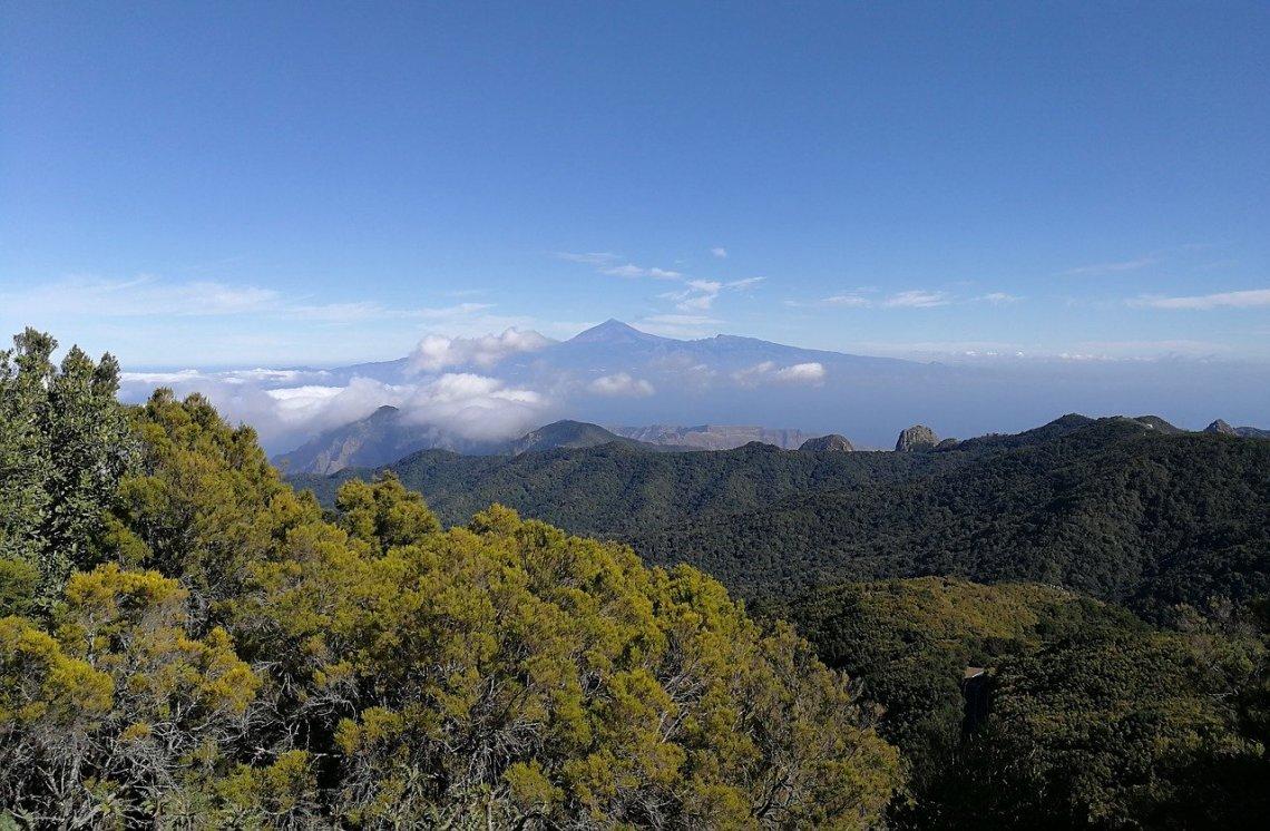 Parque Natural de Garajonay (La Gomera)