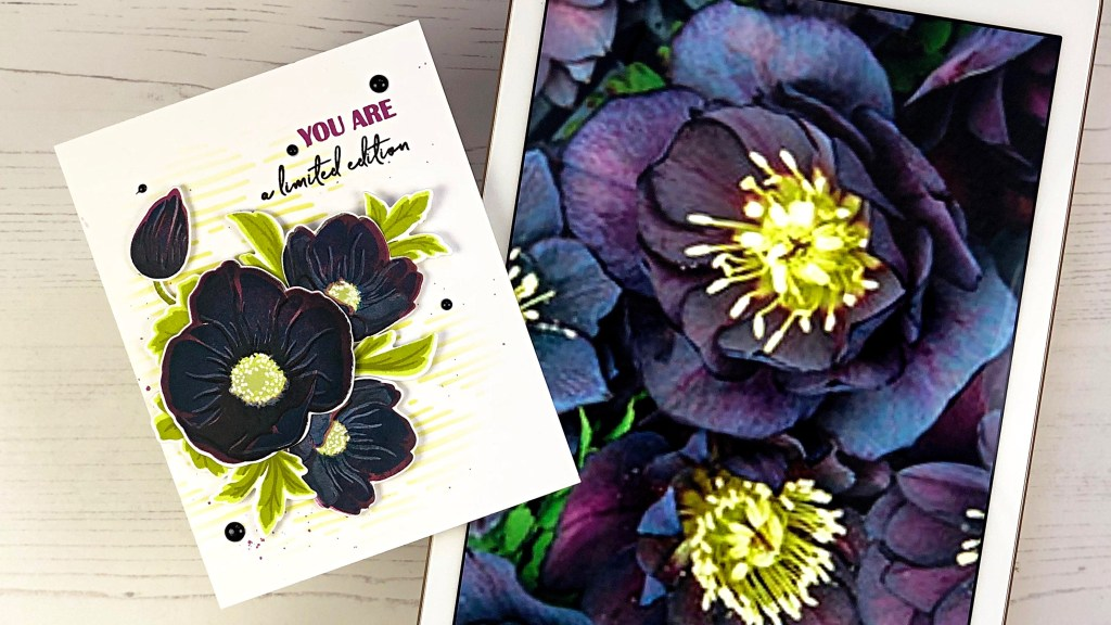 Dark & Handsome Hellebore Inspiration Photo Compared to Card Design