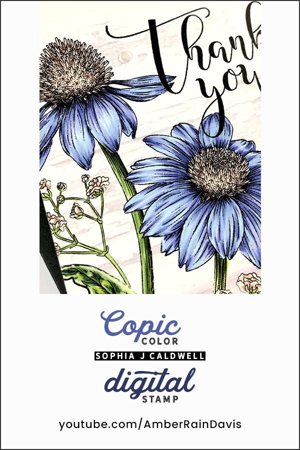 PINTEREST   Copic Color Digital Stamps