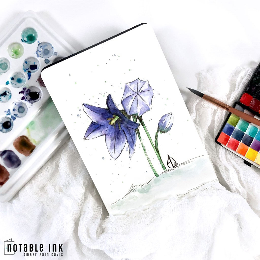 Paint With Me | Balloon Flower