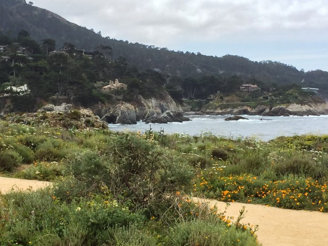 Pelican Point, Point Lobos State Park, Carmel