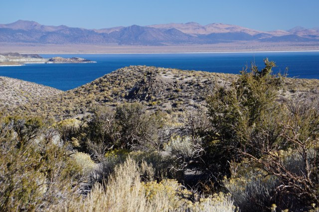 View of Mono Lake from the access road to the South Lake Tufa