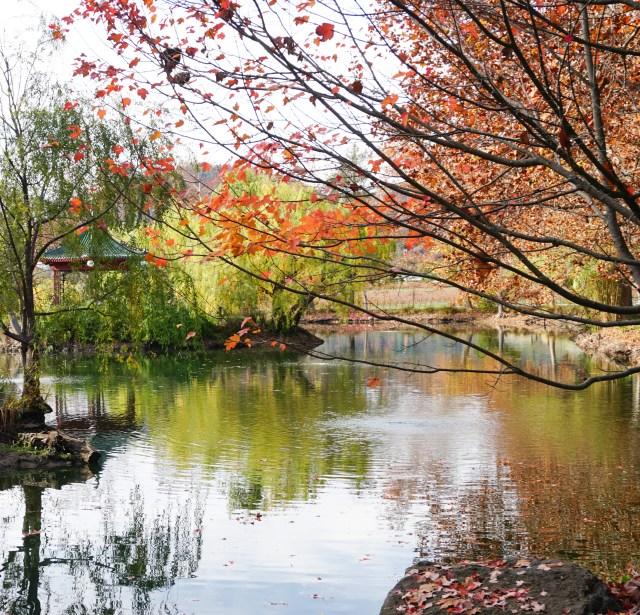 Jade Lake Chateau Montelena Napa Valley California