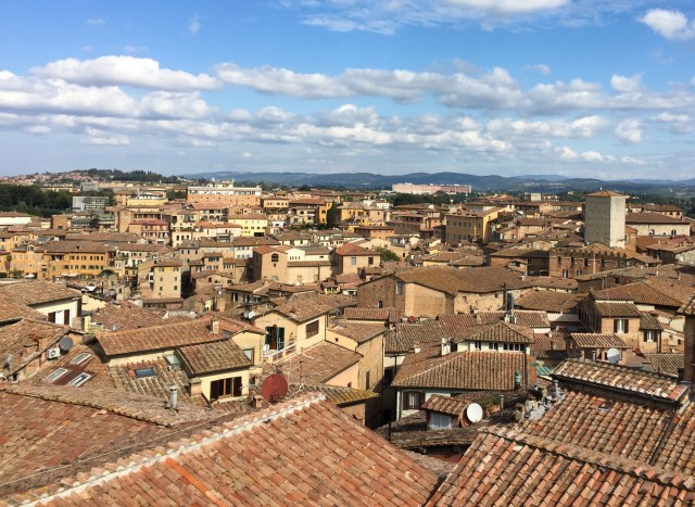 The rooftops of Siena, seen from the Panorama dal Facciatone in Siena, Italy