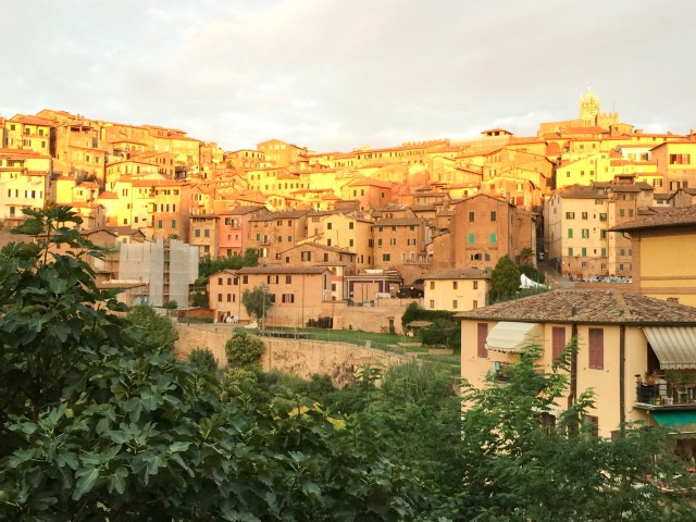 View of the town from Villa del Sole in Siena Italy