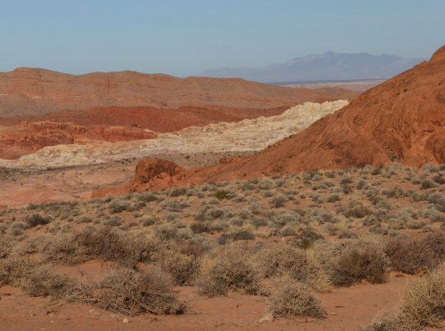 View from the Fire Wave Trail at Valley of Fire Park