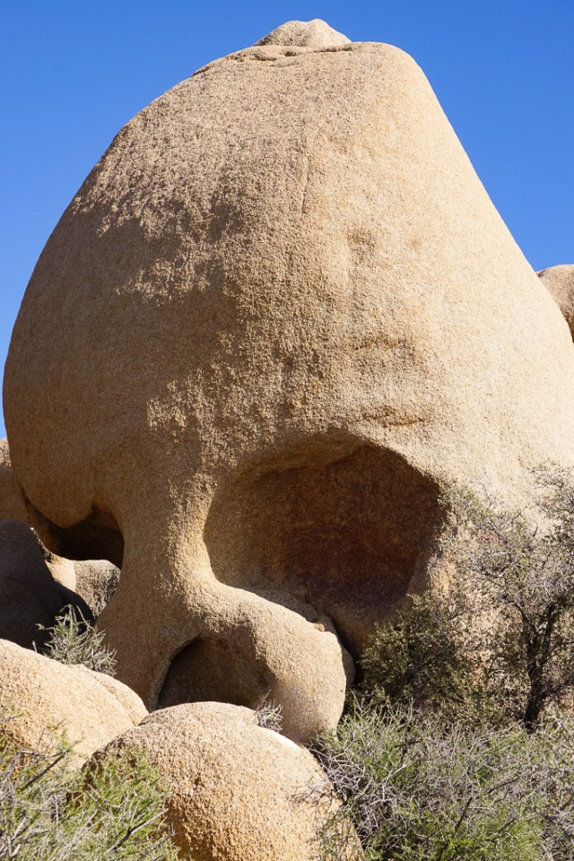 Skull Rock in Joshua Tree National Park California USA