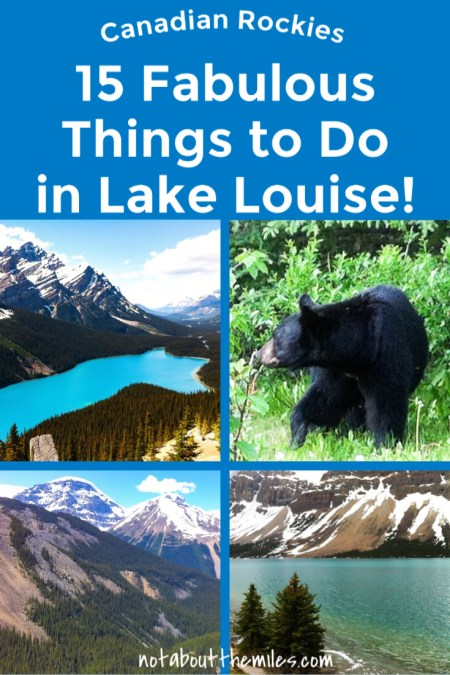 From photography to hikes, and renting a canoe to scenic drives, you'll be spoiled for choice on what to do in and around Lake Louise in the Canadian Rockies. Check out my list of 15 fun things to do in Lake Louise!