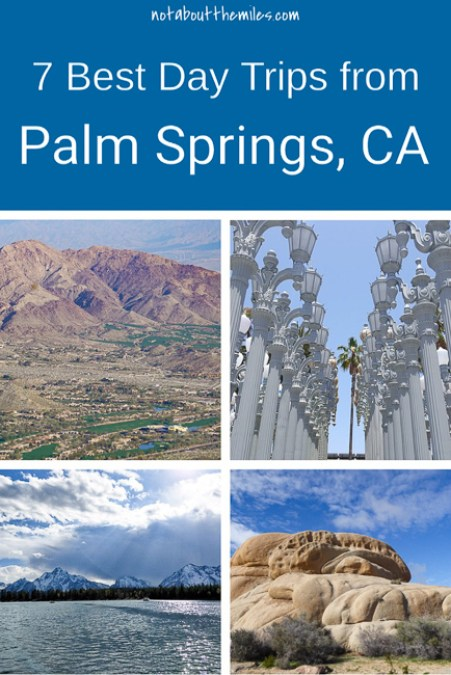 Discover the 7 best day trips from Palm Springs you must add to your itinerary! Choose from urban hotspots like San Diego and LA to national and state parks.