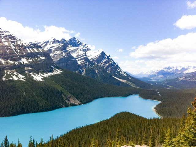 Peyto Lake in the Canadian Rockies is one of the best lakes near Banff to visit
