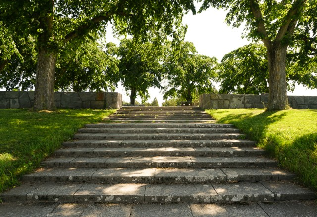 Meditation Grove Woodland Cemetery Stockholm
