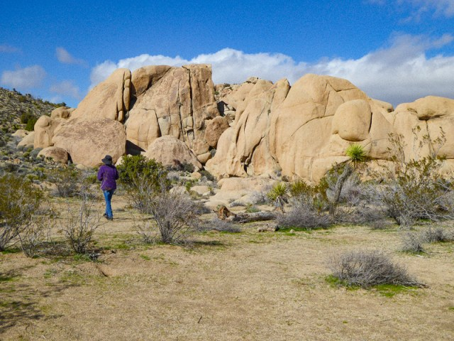 Exploring Joshua Tree National Park in Southern California