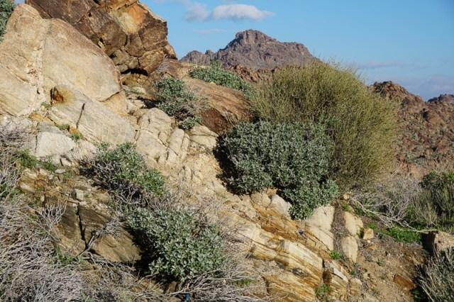 Rocks along Highway 74 in California