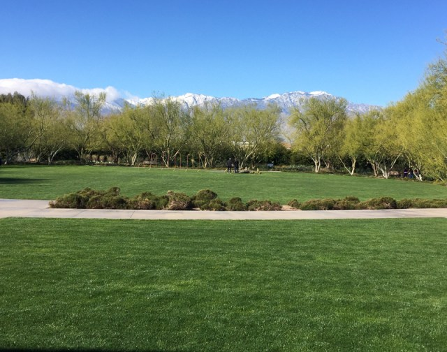 View from the Visitor Center at Sunnylands in Rancho Mirage California