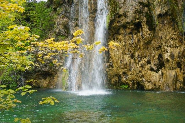 Foliage at Plitvice Lakes in Croatia