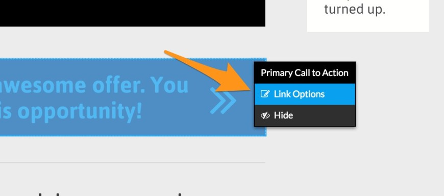 link options screenshot in leadpages