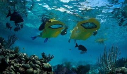 Zayak Underwater View Sea Sled