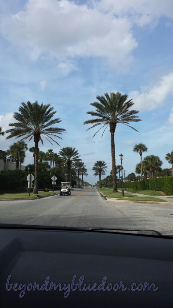 ponte verda, Florida, neighborhood, walking, travel, traveling
