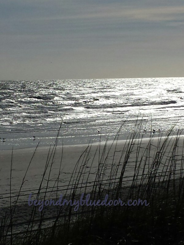 travel, travel blog, traveling, Louisville travel blogger, Jax Beach