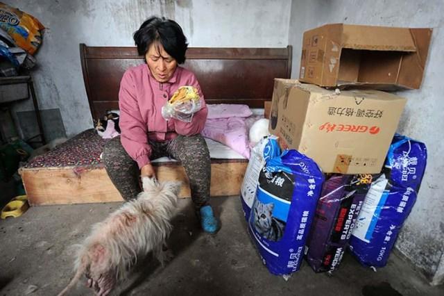 donna-saves-100-cani-Yulin-10
