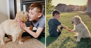 Niño diferencia extremidades adopta cachorro condición similar