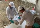 Unidad de Búsqueda de Desaparecidos de Colombia reubica 416 cuerpos de presuntas víctimas del conflicto armado