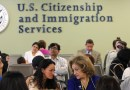Cómo revisar tu estatus migratorio en línea