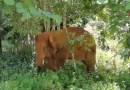 Uno de los elefantes errantes de China finalmente llegó a casa. Pero los problemas expuestos por el viaje de la manada no van a desaparecer