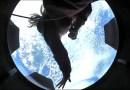 Inspiration4 de SpaceX comparte las primeras imágenes desde el espacio