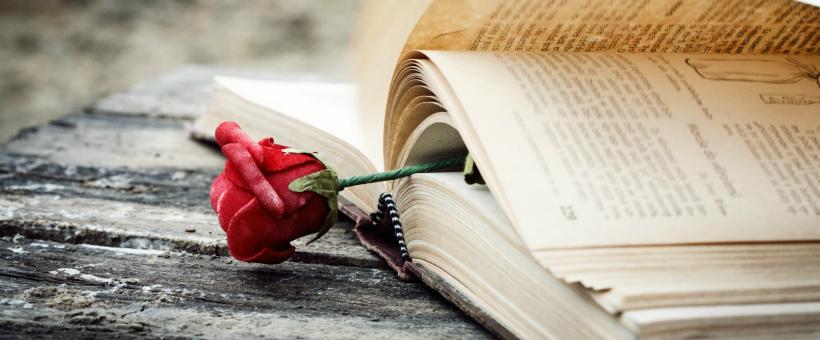 15 livros de romance para você ler no Wattpad - Parte I