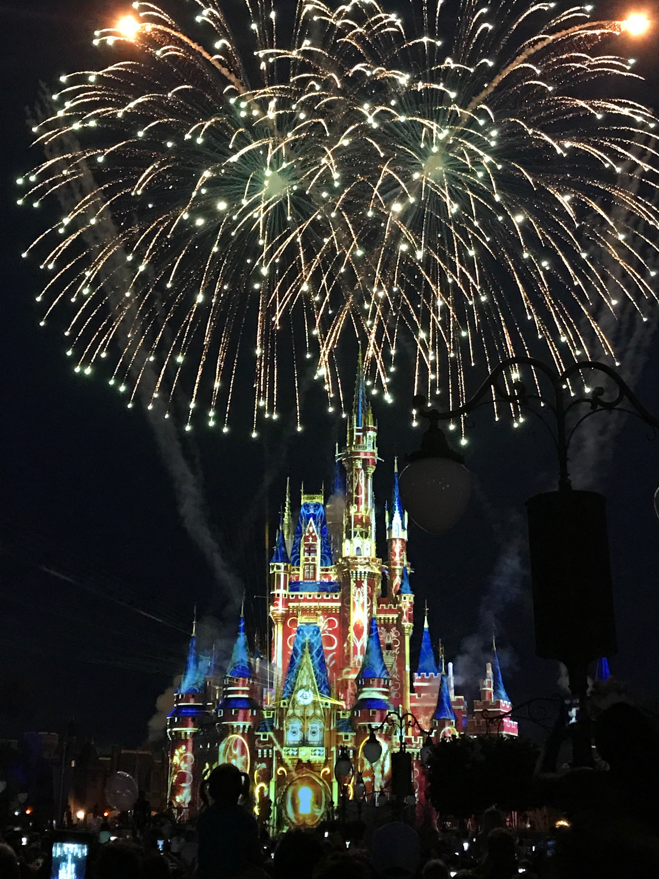 Walt Disney Parks and Resorts scores big at the Food Allergy Ball