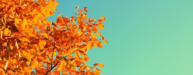 complimentary_autumn_colors-851x315