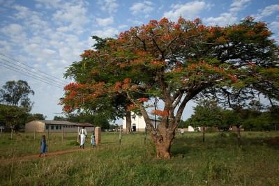 Alenga, Uganda - Note Karacel