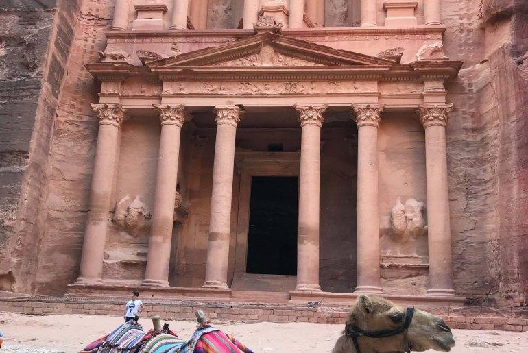 Petra (Jordania) camello