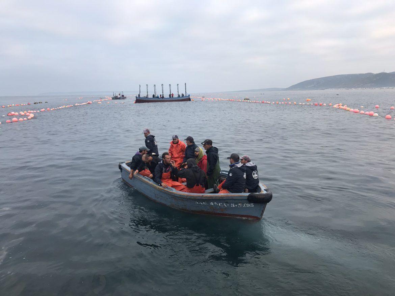pescadores de la pesca del atún de Almadraba