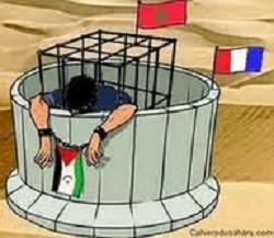 ⚡️ 🇪🇭 Las noticias saharauis del 25 de octubre de 2018: #ActualidadSaharaui HOY 🇪🇭🇪🇭🇪🇭