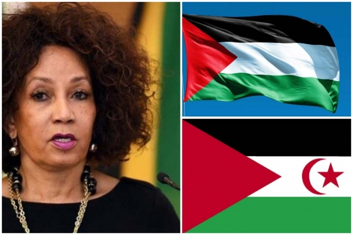 Canciller sudafricana reitera apoyo a Palestina y República Saharaui(PRENSA) | Sahara Press Service