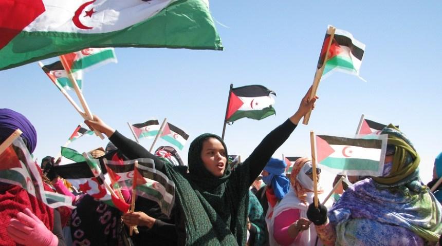 La télévision italienne s'intéresse à la question sahraouie – Algérie Patriotique