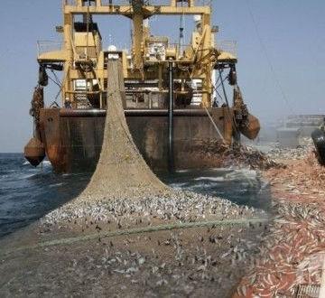 EU-Morocco fisheries agreement: 98 Sahrawi associations call on Euro-deputies to vote against | Sahara Press Service