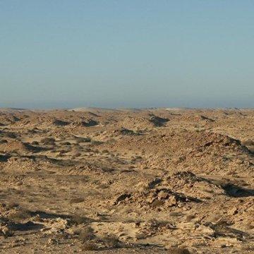 Bouteflika précise la position de l'Algérie dans le conflit au Sahara occidental – Sputnik France